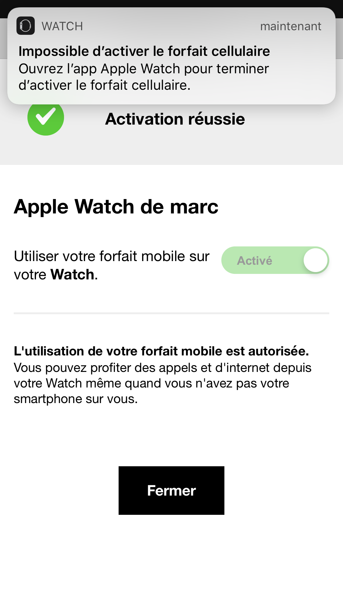copie ecran apple watch