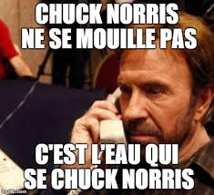 Chuck Norris_2.jpeg