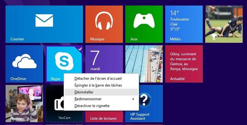 Vignette Skype.jpg